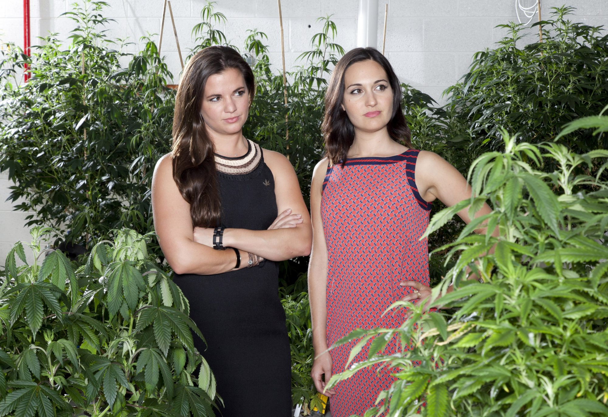 "Olivia Mannix, left, and Jennifer DeFalco, co-founders of the start-up Cannabrand, at a marijuana grow house in Denver, Sept. 17, 2014. Since Colorado legalized recreational marijuana sales, the state has seen so-called ""gangapreneurs"" rush in, many aiming to help pot shed the stoner stigma. ""We want to show the world that normal, professional, successful people consume cannabis,"" says Mannix. (Morgan Rachel Levy/The New York Times) -- PHOTO MOVED IN ADVANCE AND NOT FOR USE - ONLINE OR IN PRINT - BEFORE OCT. 5, 2014."